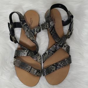 Urban Outfitters sandals 10 gray snake skin